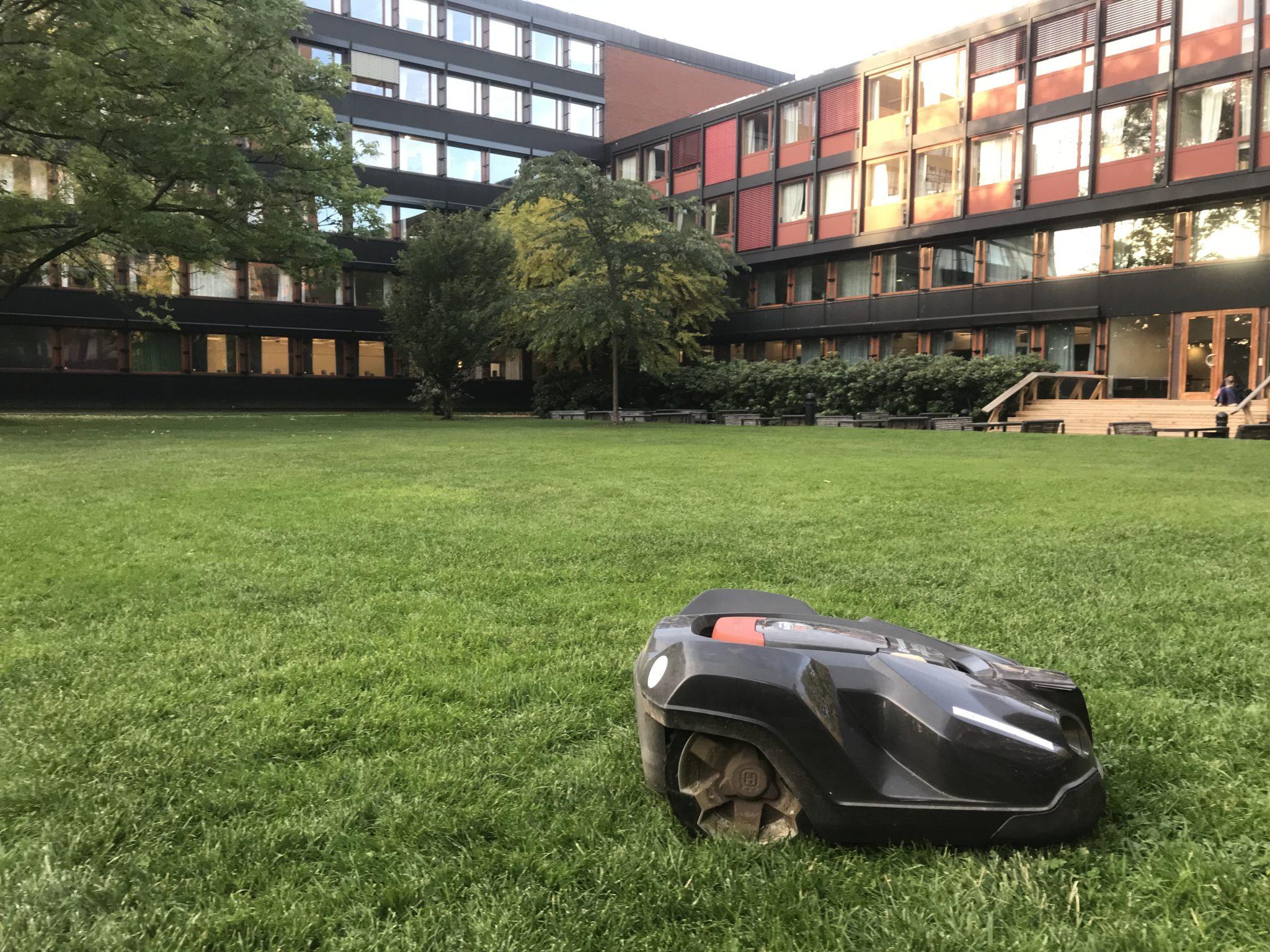 An der Universität Oslo wurden die Gärtner durch Rasenmäher-Roboter ersetzt, die nach dem Zufallsprinzip über die Wiesen tuckern. Foto: Lena Fiedler