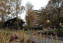 Blick über den Campus der Universität Oslo. Foto: Lena Fiedler
