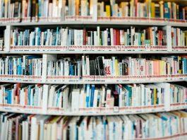 Blick in ein Bücherregal. (Symbolfoto) Foto: unsplash/chuttersnap